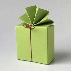 Geschenkschachtel FA 2-maigrün